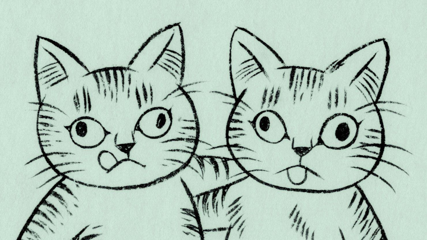 猫が来て草の穂綿を乱しけり。【ショローの女】
