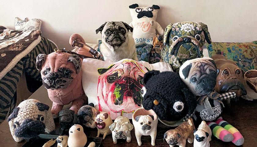 パグ飼い歴20年。自慢のコレクションを見よ!〈フォトエッセイ〉