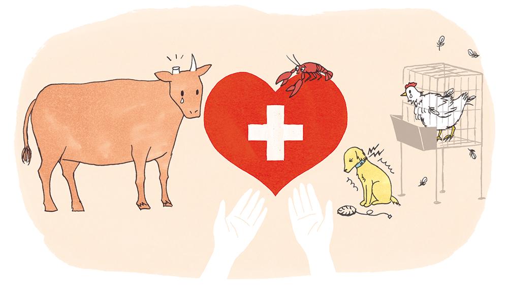 エビを生きたままゆでるのはNG⁉️ 動物を愛する国スイス