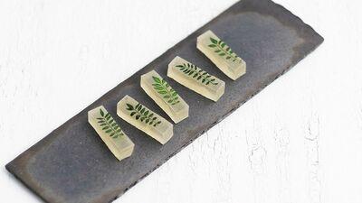 【京の菓子】小粒でもピリリ、山椒の若芽がのった名菓 ~霜月「木ノ芽琥珀」