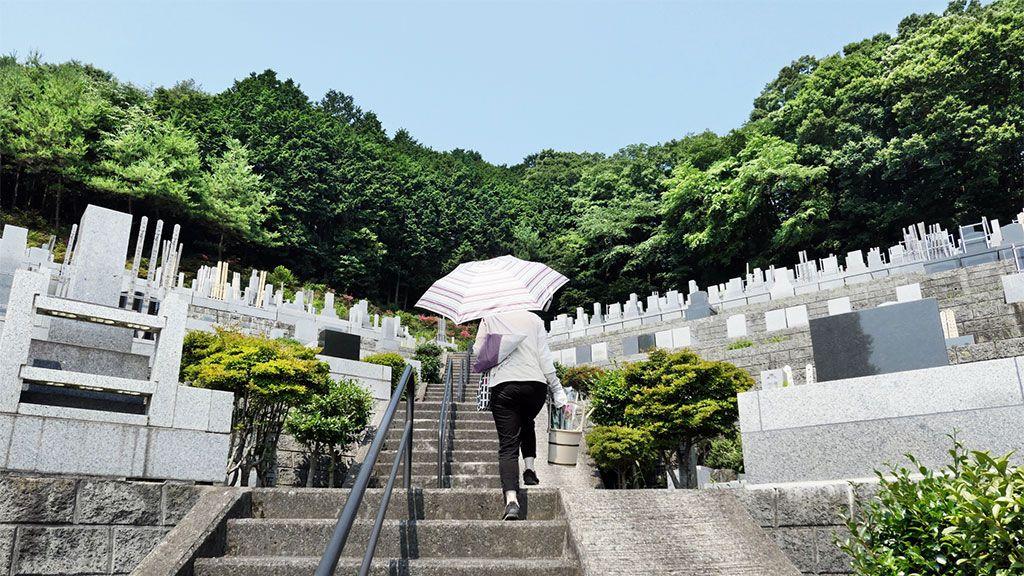 """樹木葬、墓参り旅行、デザイン墓石…親たちの""""墓探し""""狂想曲"""